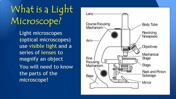Microscope 101 - How to Use a Light Microscope {Editable} Ppt with Handout