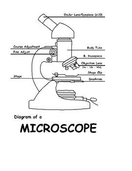 Microscope 1st Use