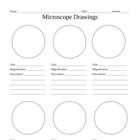 Microscope Drawings handout
