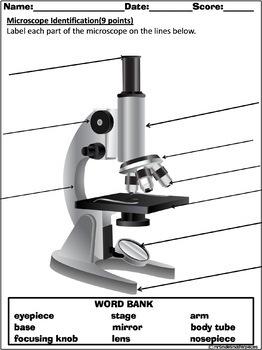 Microscope Exploration