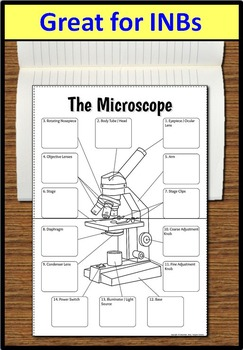 Microscope Foldable - Big Foldable for Interactive Notebooks or Binders