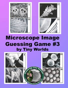 Microscope Image Guessing Game #3 with Scanning Electron M