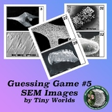 Microscope Image Guessing Game 5