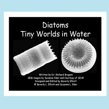 Microscope Images of Diatoms in an E-Book