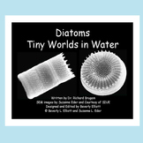 Microscope Images of Diatoms in an E-Book STEM