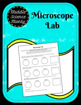 Microscope Lab (Letter e, prepared plant and animal slide)
