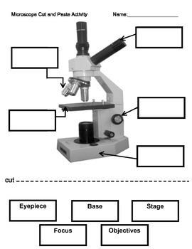 Microscope Labeling Activity
