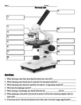 Microscope Mini-lesson and Quiz