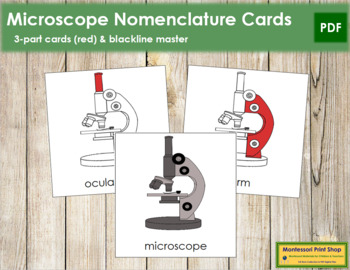 Microscope Nomenclature Cards (Red)