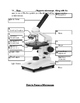 Microscope Notes Word Document