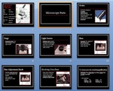 Microscope Parts - Power Point - Keene