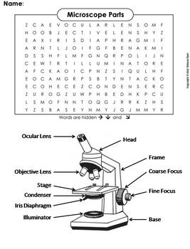 Microscope Parts Worksheet/ Word Search