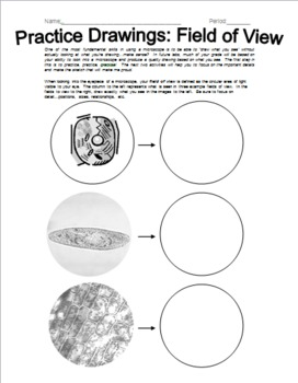 Microscope Drawing Worksheet Microscope Prac...
