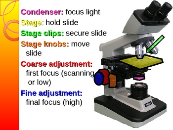Microscope Use and Care