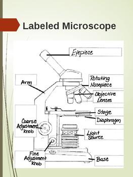 Microscope User Manual