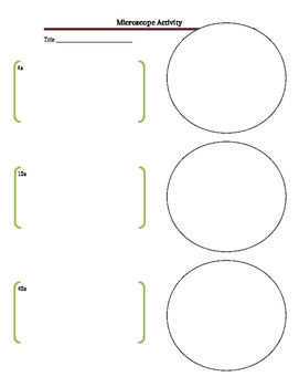 Microscope activity 4x, 10x, 40x Slide view sheet