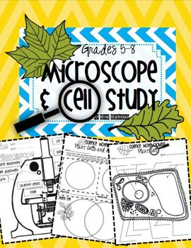 Microscope and Cell Study {Intermediate}