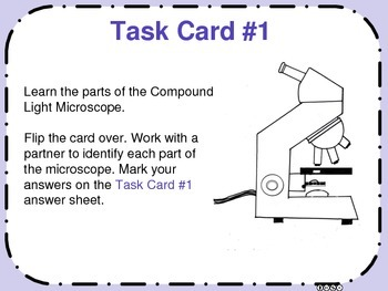 Microscope and Observing Cells Task Cards