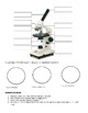 Microscope and Wet-mound Worksheet
