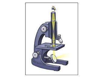 Microscope cloze