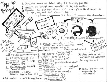 Microscope parts and Magnification Coloring Sheet and Questions
