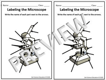 Microscopes Power Point