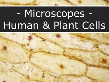 Microscopes - Visualizing Plant & Human Cells LAB