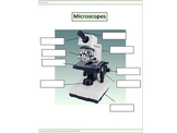 Microscopes worksheets