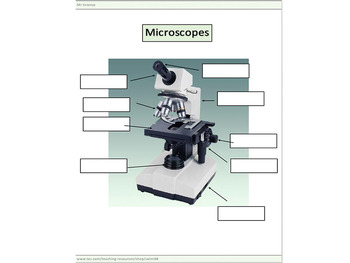 Microscopes worksheets