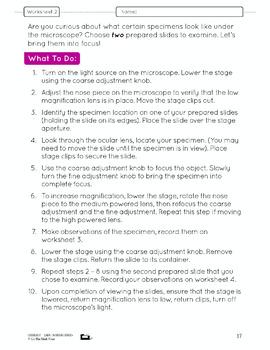 Microscopic Work Lesson Plan Grade 8