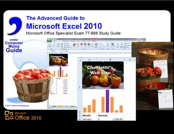 Microsoft Excel 2010 Advanced: Sample Files