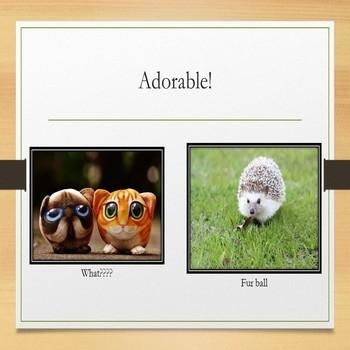 Microsoft PowerPoint Skills - Photo Album Lesson
