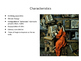 Middle Ages in Europe PPT