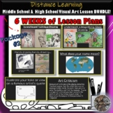 Middle & High School Distance Learning Visual Art Lesson B