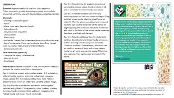 Middle School Art Project: Macro Animal Eyes (Mixed Media)