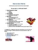 Middle School Behavior and Performance Motivation Program