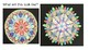 Middle School Collaborative Mandalas Collage Project