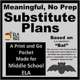 Middle School NO PREP  Poem Comprehension Packet To Leave for Subs!