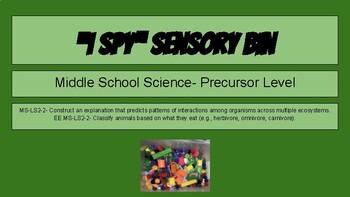 Middle School Essential Elements: Science Sensory Bin