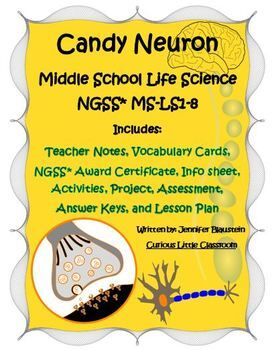 Middle School Life Science- Candy Neuron