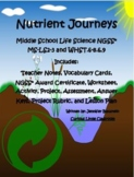 Middle School Life Science- Nutrient Journeys