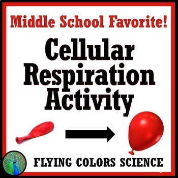 Blow Up a Balloon w/ Cellular Respiration Lab Activity - NGSS MS-LS2-3