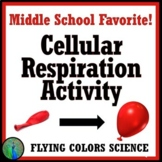 Fun and Easy Cellular Respiration Lab Activity - Middle School NGSS MS-LS2-3