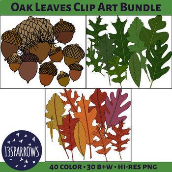 Midwest Oak Leaves Clip Art Bundle