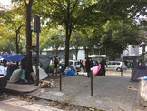 Migrant Crisis Bundle: Novice and Intermediate students