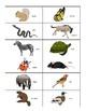 Migrate or Hibernate? Animal Migration Science Sorting Center & Recording Sheet