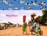 Migration Basics