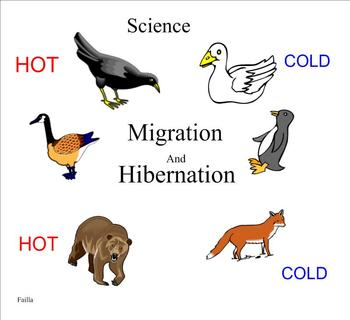 Migration and Hibernation