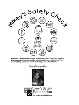 Mikeys Safety Check