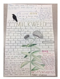 Milkweed One Pager Assignment